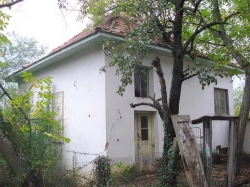 Враца, с. Горно Пещене, Продава