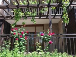 Апартамент гр. Созопол